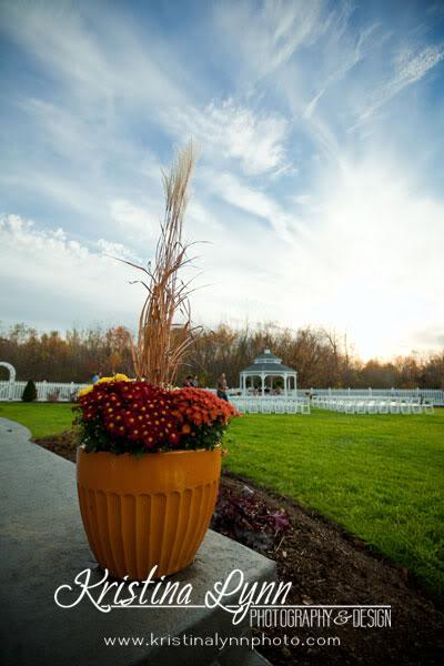 On location commercial photography Baldwin WI Mystical Rose Gardens Studio Fleurette