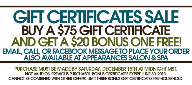 Sale on gift certificates from Kristina Lynn Photography & Design, a Denver Colorado based photographer