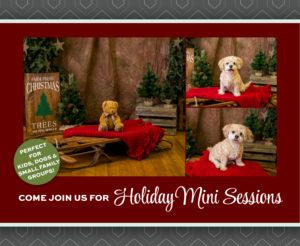 Photos of holiday mini photo session set.